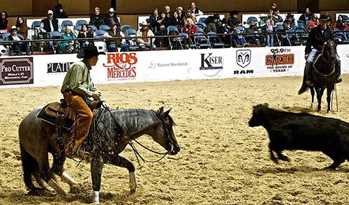 Ryder Carpenter Associate at Texas Ranch Sales LLC image 1