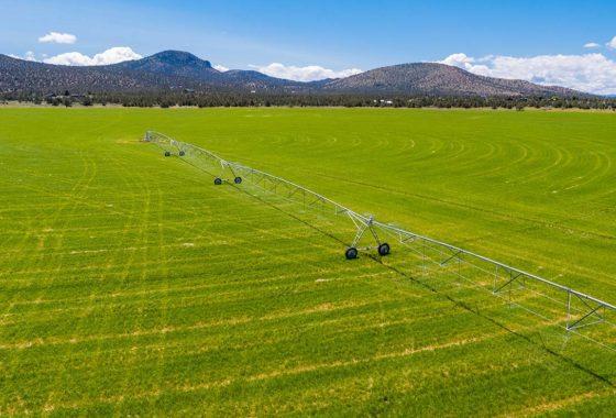 Y-Bell Farms 1135 Acre Ranch Crook County Oregon Image 43