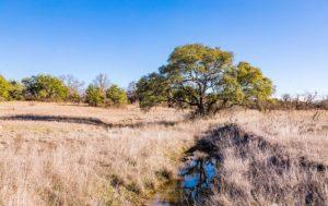 Brownwood Estates Tract 9 photo