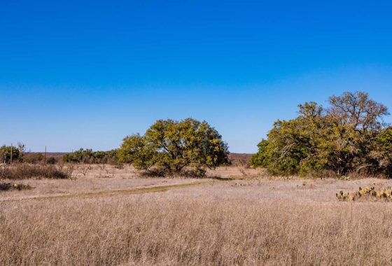 Brownwood Estates 18 Acre Ranch Brown County Tract 6 Image 1