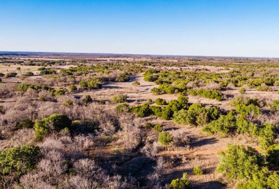 Brownwood Estates 18 Acre Ranch Brown County Tract 7 Image 6