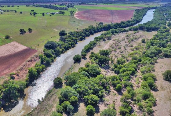 Colorado River Ranch 134 Acre Ranch San Saba County Image 19