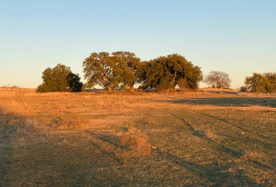 Killion Ranch 53 Acre Ranch Parker County Image 2