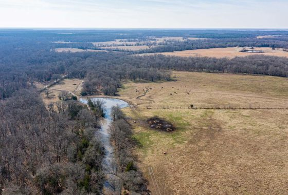 Simmons Ranch 230 Acre Ranch Red River County Image 15