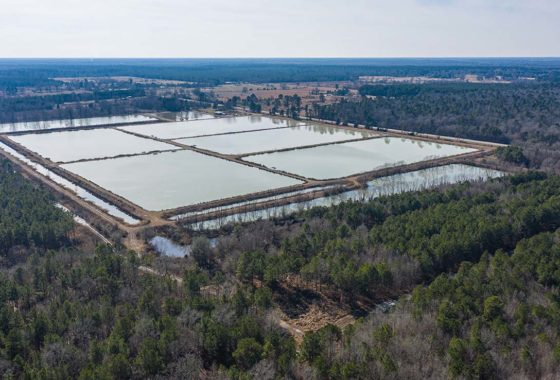 Red River Catfish Farm 298 Acre Ranch Red River County Image 11