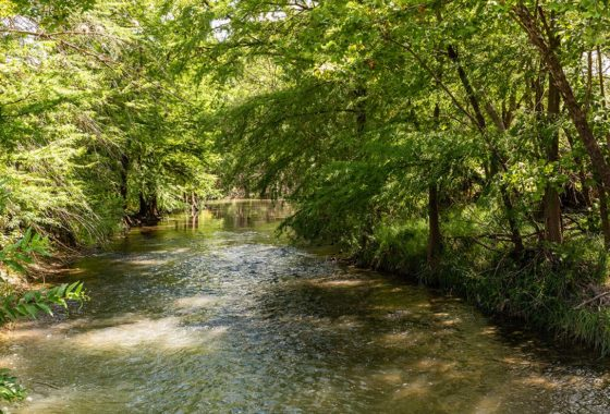 Riverside Ranch 170 Acre Ranch Bexar County Image 12