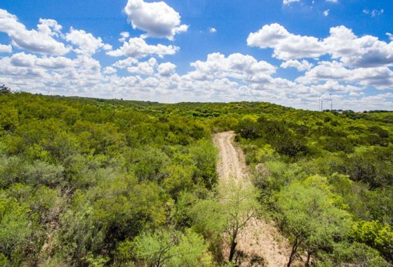 Castroville Summit 17 Acre Ranch Medina County Image 5