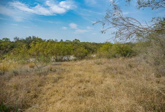 Dry Frio River Ranch 44 Acre Ranch Uvalde County Image 1