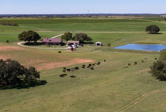 Hevner Ranch 209 Acre Ranch Atascosa County Image 13