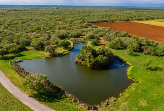 Oasis Full Draw Ranch 3309 Acre Ranch Dimmit County Image 18