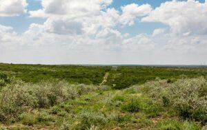 San Diego Creek Ranch photo
