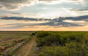 Panther Creek Ranch photo