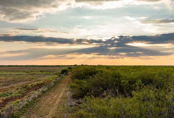 Panther Creek 333 Acre Ranch Frio County Image 1