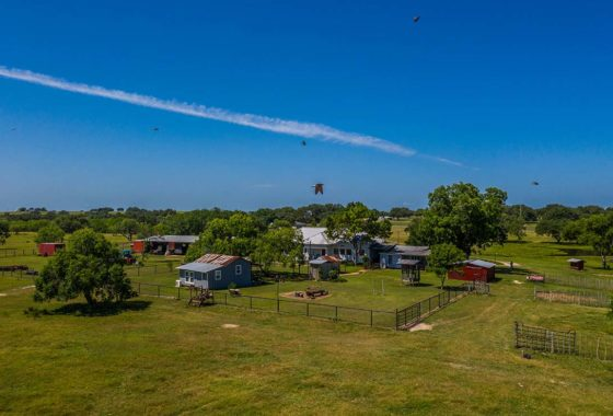 Manahuilla Creek Ranch 126 Acre Ranch Goliad County Image 12