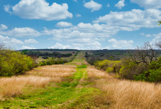 Encino Vista Ranch 270 Acre Ranch Karnes County Image 1