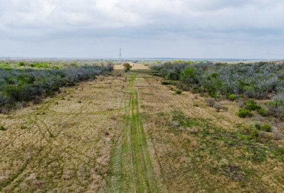 Encino Vista Ranch 270 Acre Ranch Karnes County Image 14