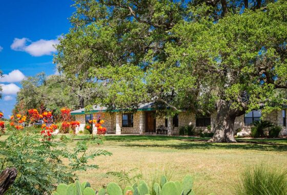 Mighty Oaks Ranch 80 Acre Ranch Karnes County Image 2