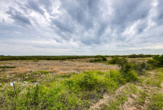 Lagarto Creek Ranch 132 Acre Ranch Live Oak County Image 11