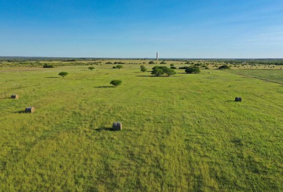 South View 60 Acre Ranch Live Oak County Image 1