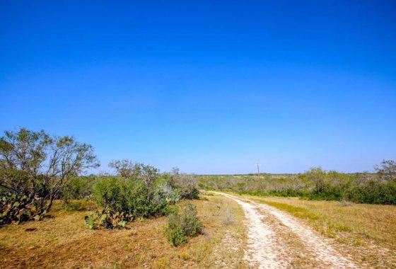 Corner Post Ranch 115 Acre Ranch Wilson County 1