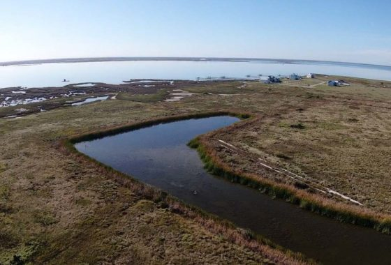 Velero Ranch 82 Acre Ranch Aransas County Image 7