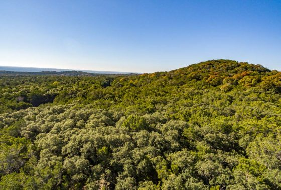 Post Oak Ranch 285 Acre Ranch Blanco County Image 15
