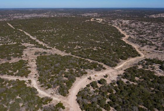 Buck Haven Ranch 209 Acre Ranch Edwards County Image 14