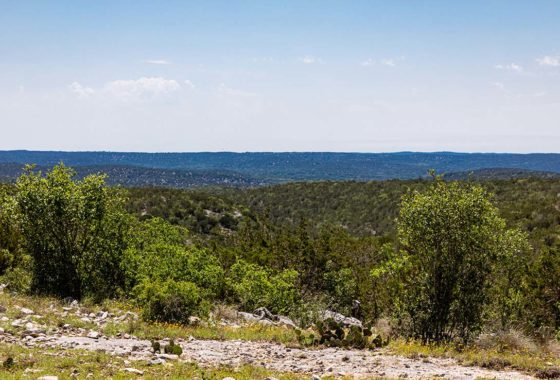 Wildlife Valley Ranch 224 Acre Ranch Edwards County Image 1