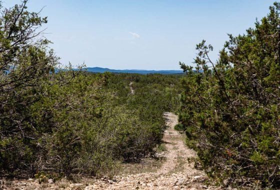 Wildlife Valley Ranch 224 Acre Ranch Edwards County Image 5