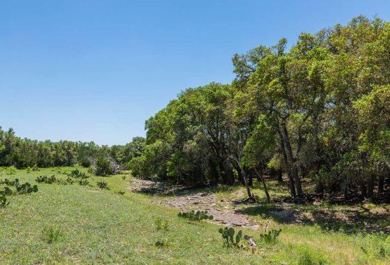 Pretorius Ranch 67 Acre Ranch Edwards County Image 10