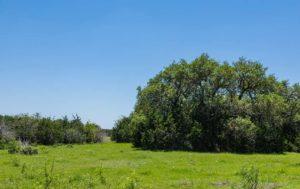 Pretorius Ranch photo