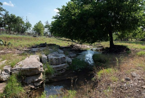 Pecan Ridge Ranch 120 Acre Ranch Gillespie County Image 3