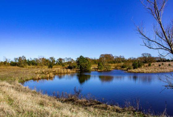 Myrtle Creek Ranch 113 Acre Ranch Robertson County Image 1